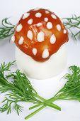 Huevo - agárico de mosca