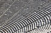 Ruinas del anfiteatro de Epidauro