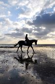 image of horse riding  - Silhouette of Female Horse Rider Walking on the Sandy Beach with Reflection of the Sky - JPG