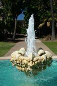 Botanical House Fountain