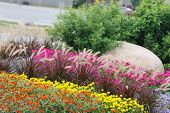 Landscaped Flower Garden.