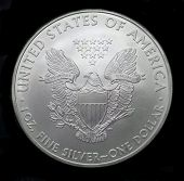 American Silver Eagle Dollar Coin