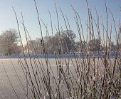 Vista sobre un lago congelado