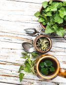 Tea With Fresh Nettles poster