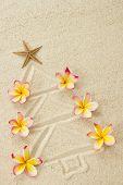 Christmas Tree Made Of Sand And Frangipani Flowers. Xmas Beach Holiday Concept  .