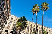 Palm Trees At Placa Reial, Barcelona poster