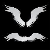 picture of veer  - Illustration of abstract angel wings on black background - JPG