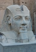picture of ramses  - Head Statue Of Ramses II In Luxor Temple - JPG