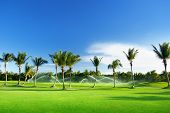 Irrigation golf course in Dominican republic