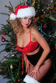 Beautiful blonde dressed as a very sexy Santa's helper
