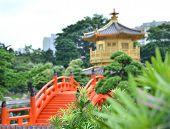 O pavilhão de ouro oriental da perfeição absoluta em Nan Lian jardim, Chi Lin Nunnery, Hong Kong