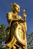 Guanyin Statue  In Wat Mokkanlan , Chomthong Chiangmai Thailand