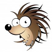 funny hedgehog cartoon