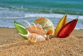 Christmas Decorations And Seashell On The Beach