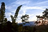 From Andes To Amazon, View Of The Tropical Rainforest, Napo Province, Archidona, Ecuador