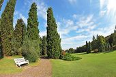 Romantic Landscape Park -  garden in Italy. White wooden bench at the edge of cypress groves. Photo taken fisheye lens