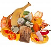 compost pile of kitchen scraps isolated on white background