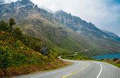 New Zealand Scenic Road
