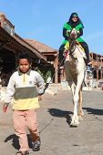 DAHAB, EGYPT - JANUARY 30, 2011: Young local boy leading female tourist on a camel. Local bedouins r