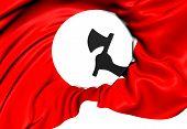Sindhi Nationalists Flag