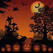 foto of bat  - Halloween cartoon landscape with pumpkins Jack - JPG