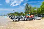 WELIGAMA, SRI LANKA - MARCH 7, 2014: Traditional Sri Lankan fishing boat decorated with zebra style