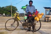 GALLE, SRI LANKA - MARCH 5, 2014: Local man selling fresh coconuts on his bike. Fresh coconuts contain milk which is a great drink for the hot climate.