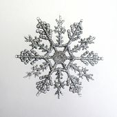 Silber Schneeflocke