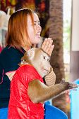 Monkey Show At Damnoen Saduak Floating Market, Thailand