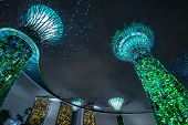 SINGAPORE - 31 DEC, 2014: Supertree Grove at Gardens by the Bay in Singapore. One of the most popula