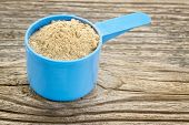 maca root powder  in a blue plastic measuring scoop against grained wood