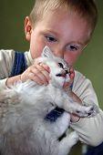 O menino brinca com um gatinho
