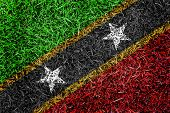 Saint Kitts And Nevis Countries Flag Color Grass Texture Background