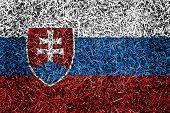 Slovak Flag Color Grass Texture Background