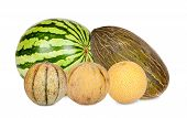 Five Different Varieties Of Melons