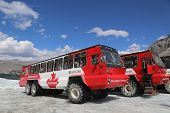 Massive Ice Explorers, specially designed for glacial travel, take tourists in the Columbia Icefield