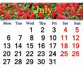 Calendar For July Of 2015 Year With Salvia