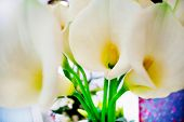 decoration with bouquet of calla lilies abroad. events