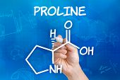 Hand with pen drawing the chemical formula of proline