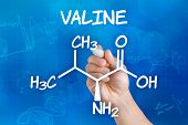 Hand with pen drawing the chemical formula of valine