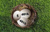 401K Nest Egg.