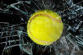 Tennis Ball Through Glass.