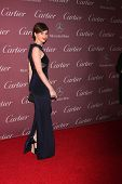 LOS ANGELES - JAN 3:  Felicity Jones at the Palm Springs Film Festival Gala at a Convention Center on January 3, 2014 in Palm Springs, CA