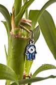 picture of hamsa  - hamsa with blue eye protection from evil on lucky bamboo plant - JPG