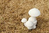 Mushroom Sculpture On Dry Turf