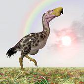 Terror Bird Kelenken