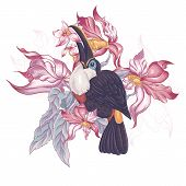 picture of toucan  - Floral Vector Vintage Card with Exotic Flowers and Toucan - JPG