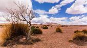 picture of south-western  - Landscape seen while doing a 3 day tour through south western bolivia - JPG