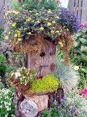 Wildflower Vogelhaus