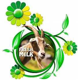 stock photo of goat horns  - Symbol with a head of goat with horns and text fresh milk green and yellow flowers with leaves - JPG